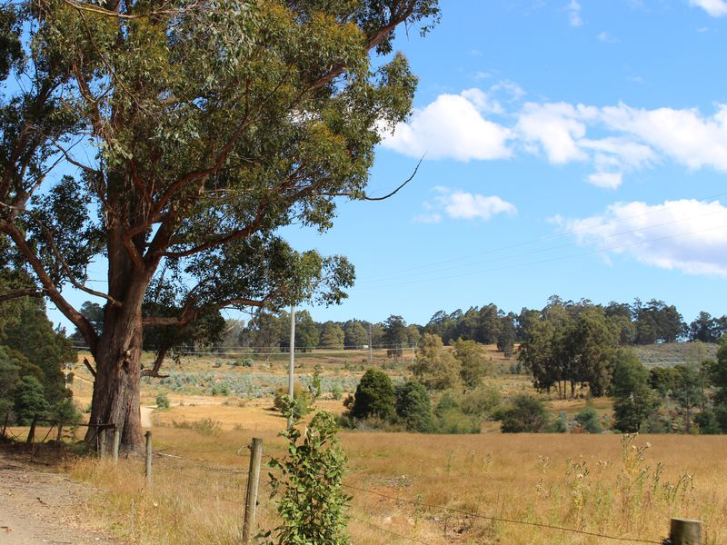 Lot 1 & 2, Harwoods Road, Castle Forbes Bay