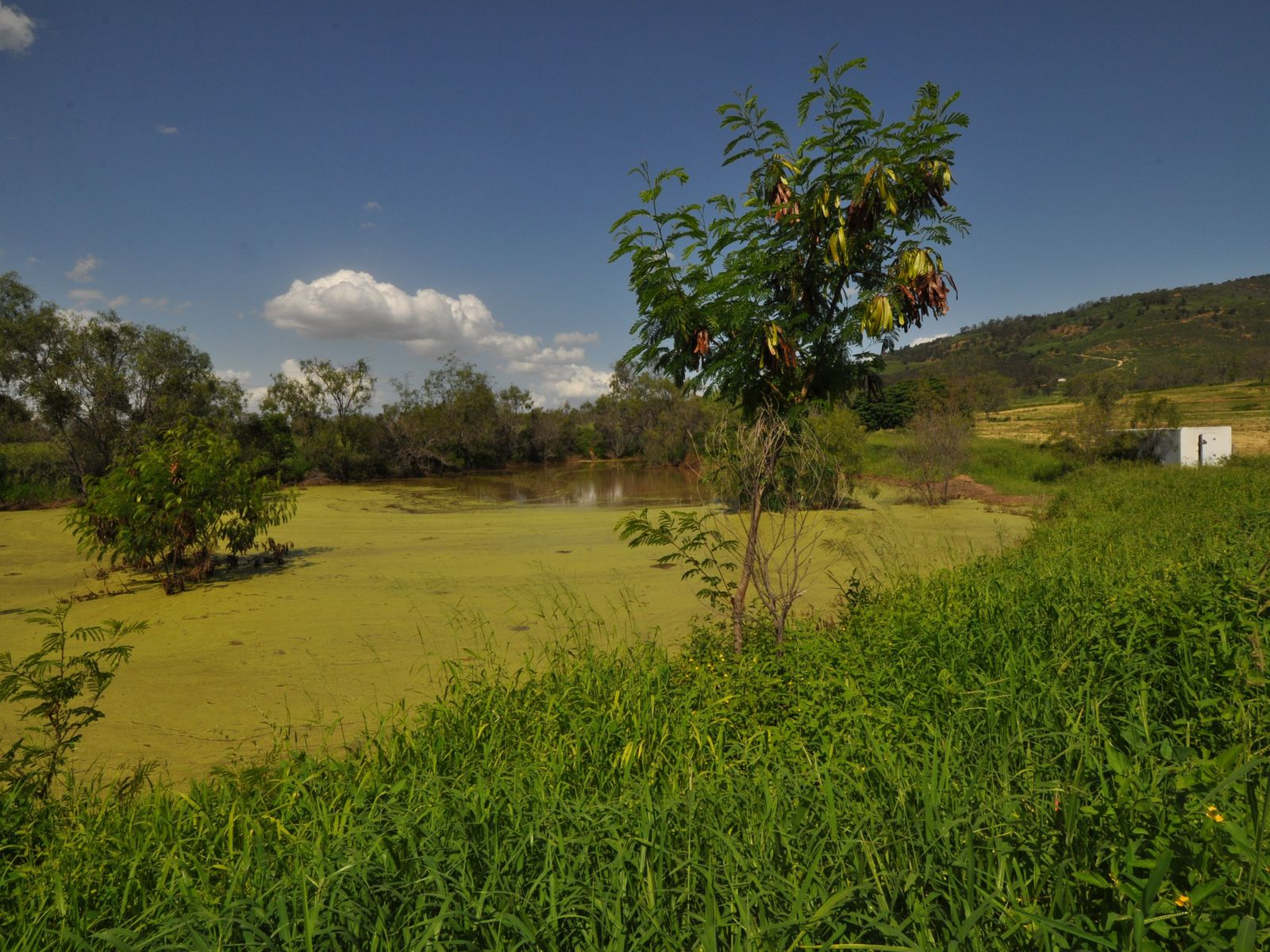 905 Gatton Clifton Road, Ma Ma Creek