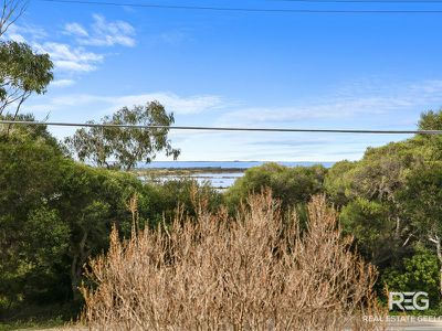 14 Portarlington Rd, Newcomb