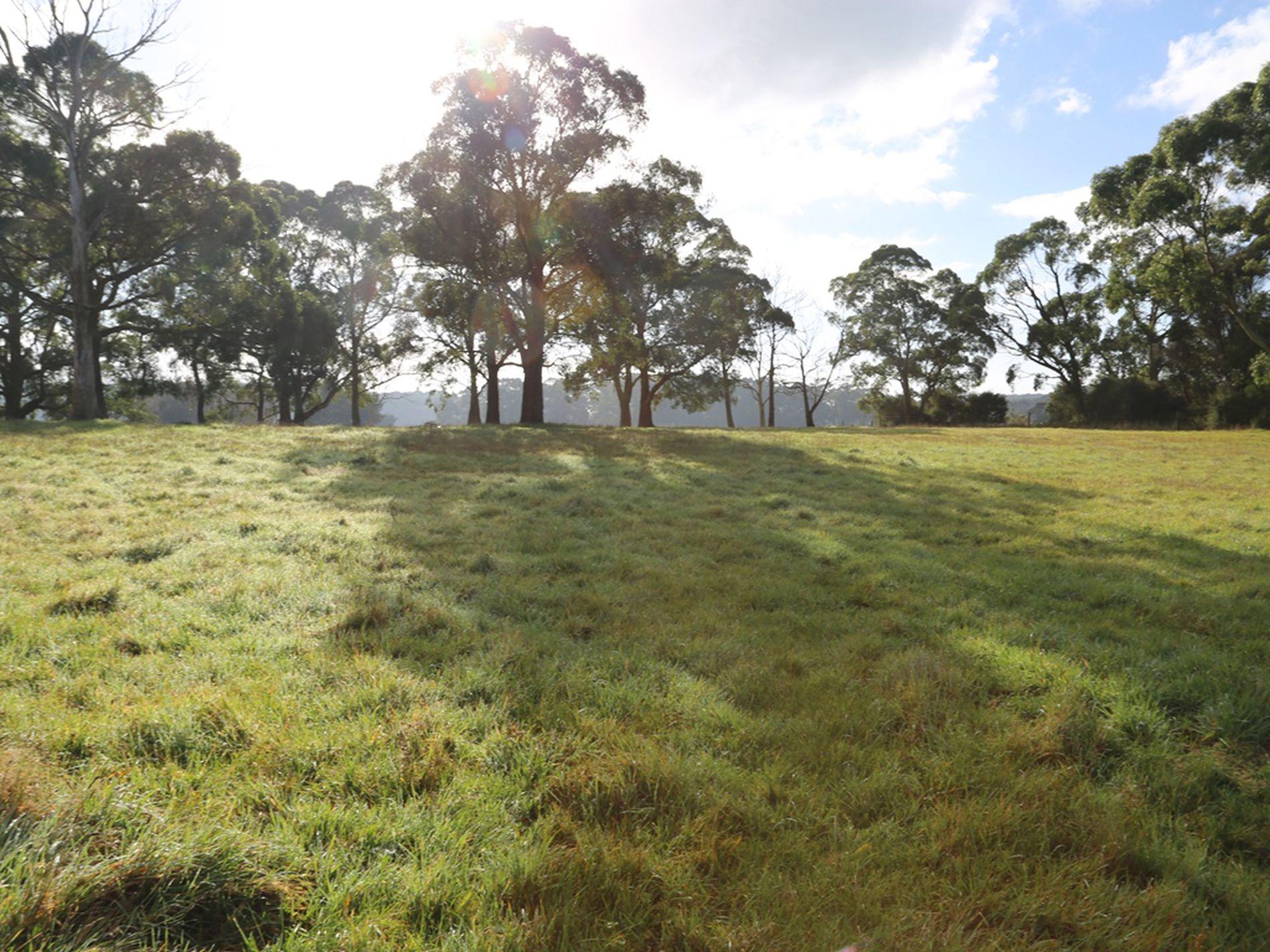 29 Rifle Range Road, Smithton