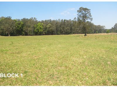 1599 Manning Point Road, Taree