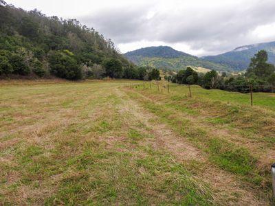 779 Kimbriki Road, Tinonee