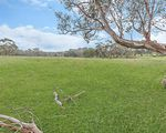 Lot 6 LP120011 Princes Highway, Bolwarra